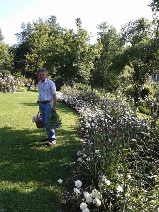 Il giardiniere Gianni Lucarelli di fronte alla bordura di iris blu e rose White Meidiland (Meilland), ottime da taglio, e Waterloo (Lens)