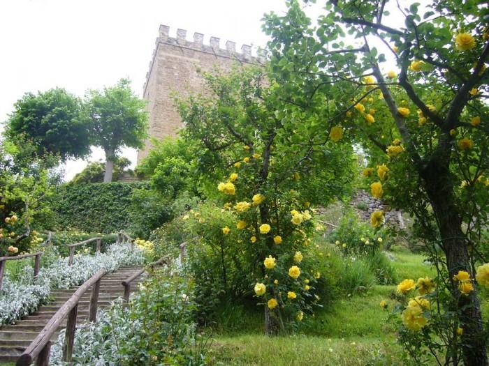 La scalinata del Frutteto fiorita di rose gialle