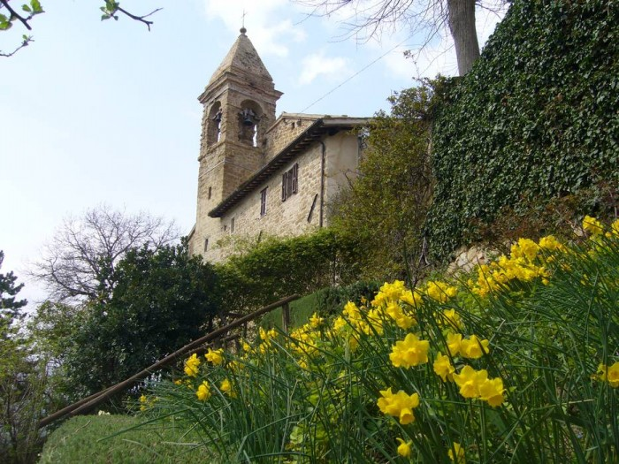 The church of St. Biagio and a clump of daffodils