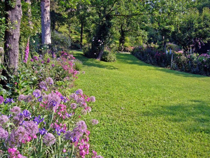 """Alliums,  blue irises,""""Sibelius"""" and """"Yves Piaget"""" roses and foxgloves in this border"""