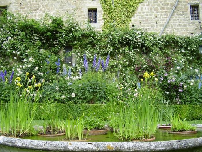 Fioriture di maggio. In primo piano la vasca con le piante acquatiche