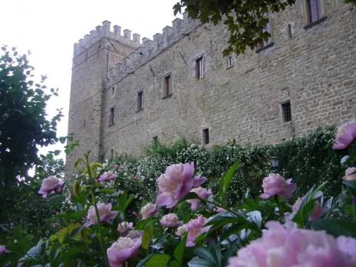 Il castello ammantato di rose in primavera. In primo piano fioritura di peonie