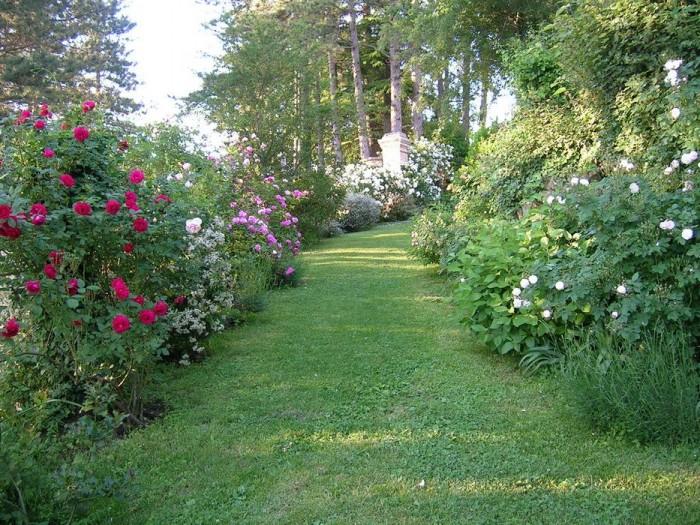 Un sentiero fiorito conduce alla Rocca dal parcheggio