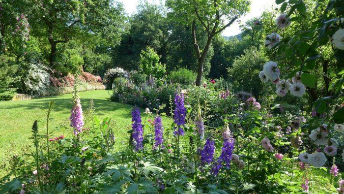 incontriamoci in giardino